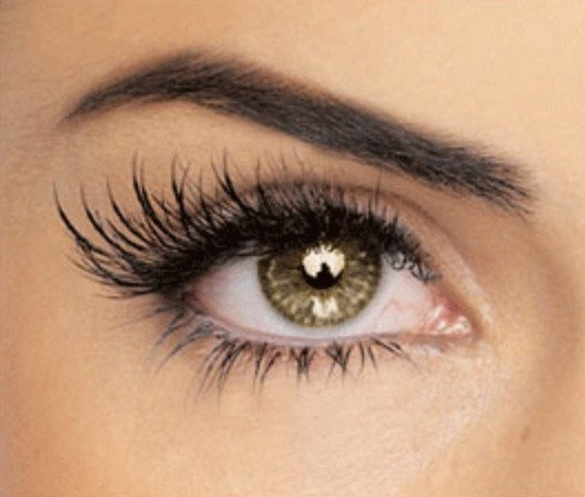 Eyelash eyebrow treatment